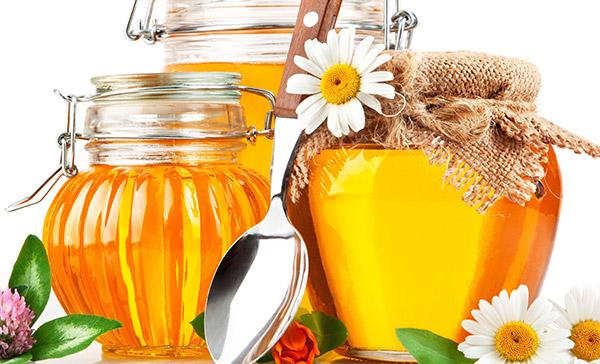 თაფლის სასარგებლო თვისებები - TV25