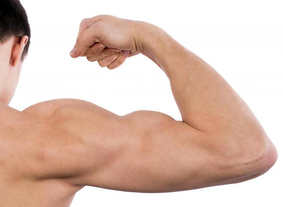 კუნთების ატროფია - მიზეზები, სახეები და მკურნალობა - მკურნალი.გე